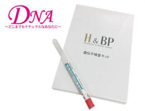 H&BP 遺伝子検査
